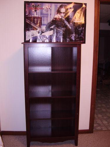 My new bookcase